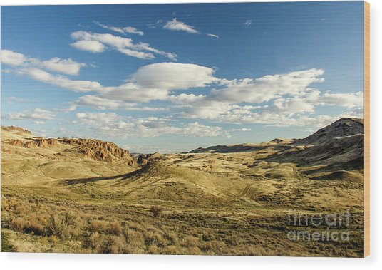 The Owyhee Desert Idaho Journey Landscape Photography By Kaylyn Franks  Wood Print