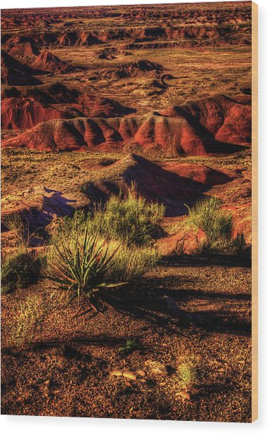 The Painted Desert From Kachina Point Wood Print