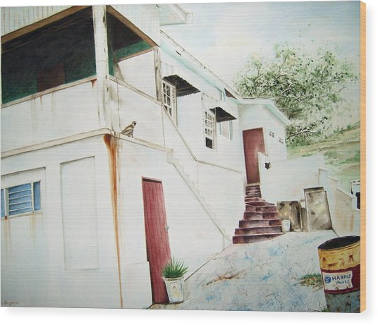 The Painters House Wood Print by Brian Degnon