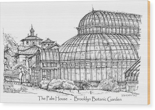 The Palm House In Brooklyn Botanic Garden Drawing By Adendorff Design