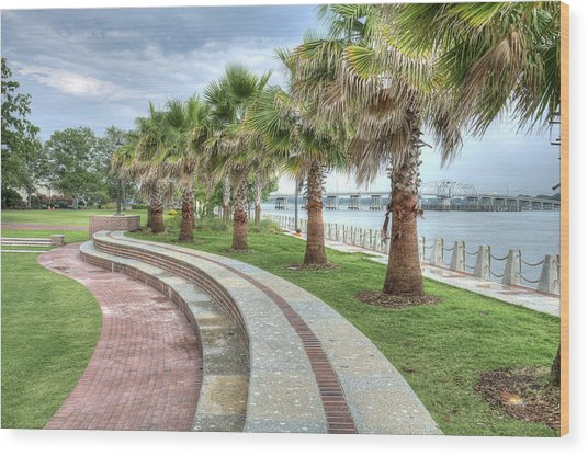 The Palms Of Water Front Park Wood Print
