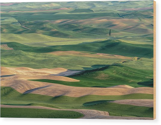 The Palouse Wood Print