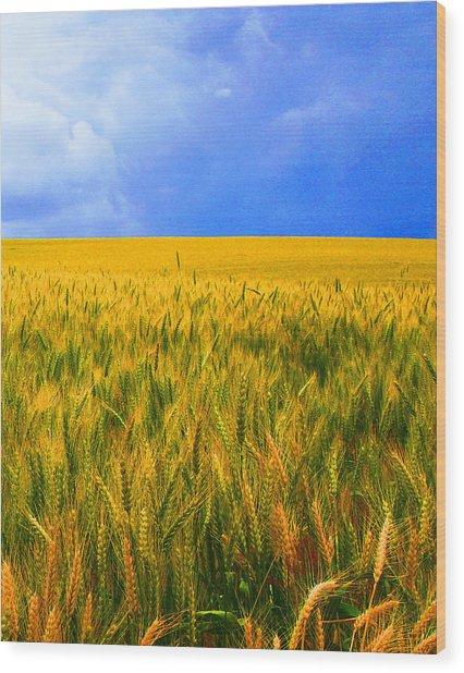 The Palouse Wheat Fields Wood Print