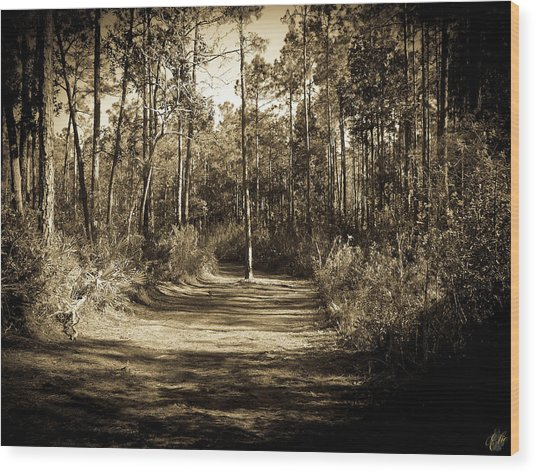 The Path Before Me, No. 6 Wood Print