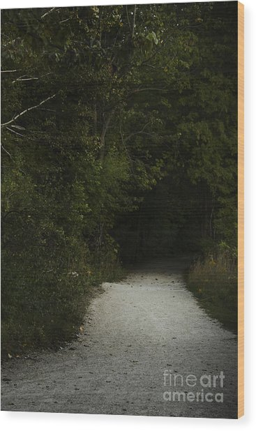 The Path In The Darkness Wood Print