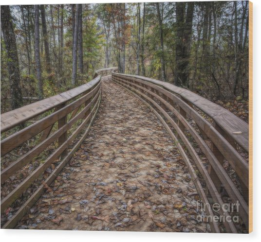 The Path That Leads Wood Print