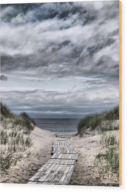 The Path To The Beach Wood Print