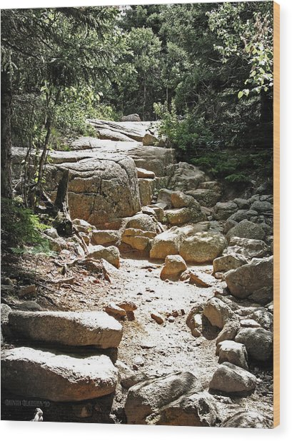 The Path To The Mountain Top Wood Print by Garth Glazier