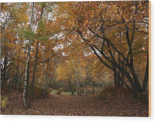 The Path Way Wood Print