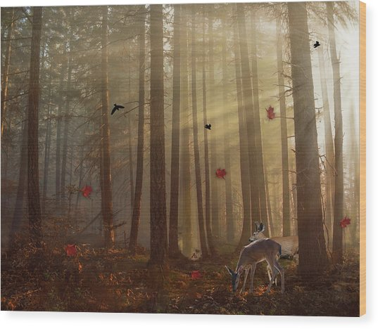 The Peace Of An Autumn Sunset Wood Print
