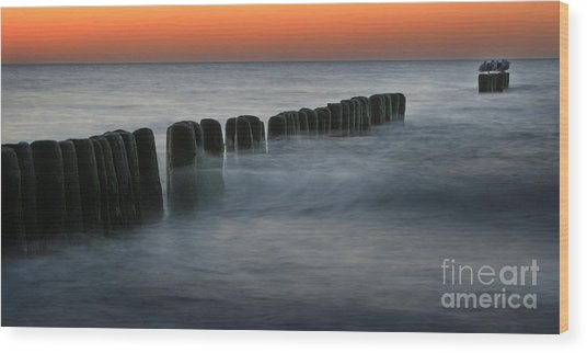 The Peaceful Sea Wood Print by Angel Ciesniarska