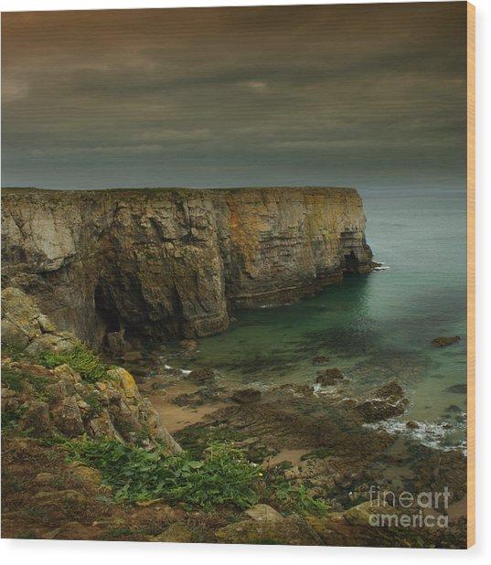 The Pembrokeshire Cliffs Wood Print by Angel Ciesniarska