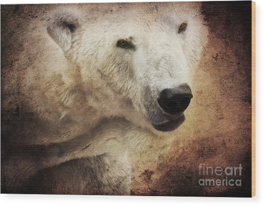 The Polar Bear Wood Print