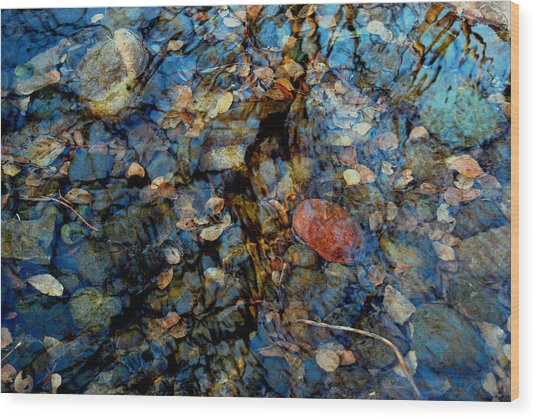 The Pond In Autumn Wood Print by Marilynne Bull