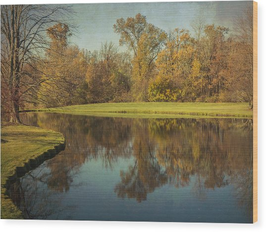 The Pond Wood Print