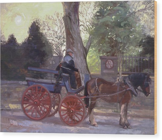 The Pony Trappe Wood Print
