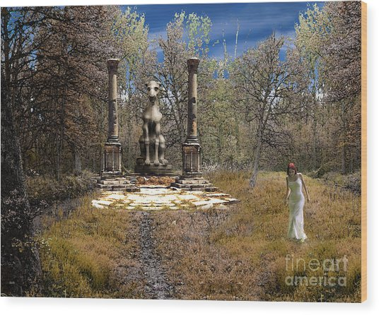 The Priestess Of The Dragon Wood Print by The Hybryds
