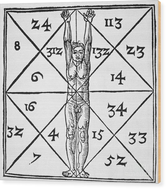 The Proportions Of Man And Their Occult Numbers From De Occulta Philosophia Libri IIi Wood Print