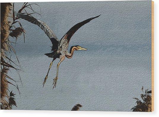 The Purple Heron Wood Print