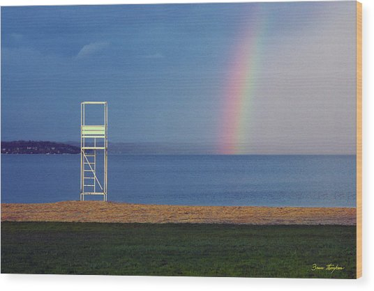 The Quiet Season - Lake Geneva Wisconsin Wood Print