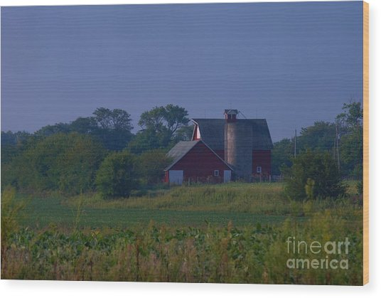 The Red Barn Wood Print by Michelle Hastings