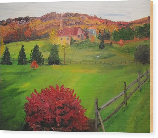The Red Bush Wood Print by Gloria Condon