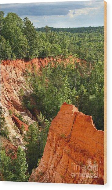 The Red Dirt Of Georgia Wood Print