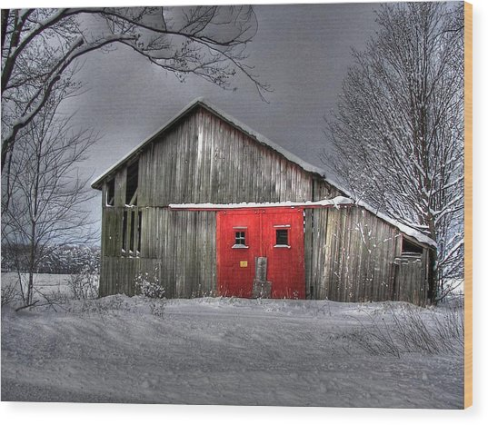 The Red Door Wood Print by Maria Dryfhout