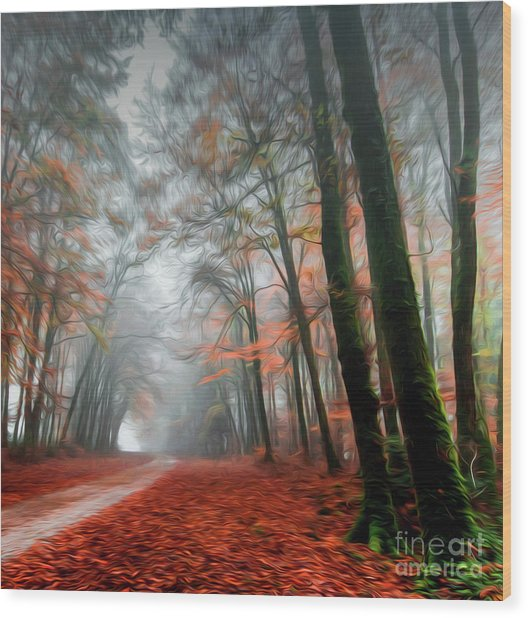 The Red Path Wood Print