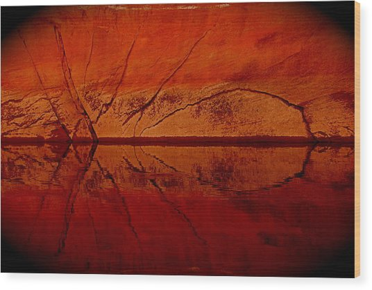 The Red Spider Wood Print