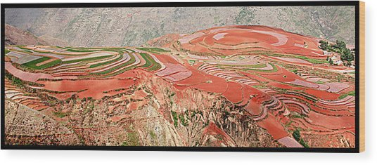 The Redlands, Yunnan, China Wood Print