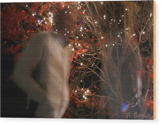 Wood Print featuring the photograph The Remains Of A Magical Memory by Angelique Bowman