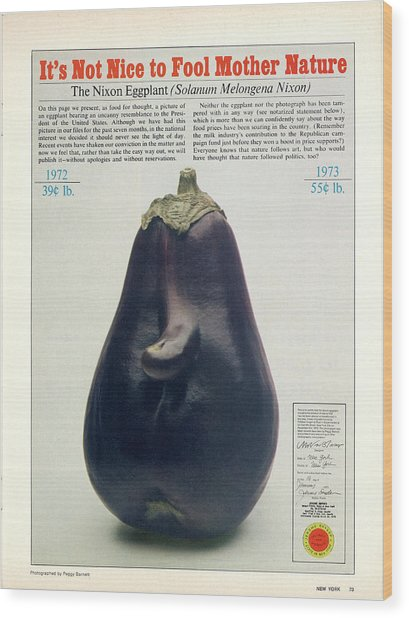 The Richard Nixon Eggplant Wood Print
