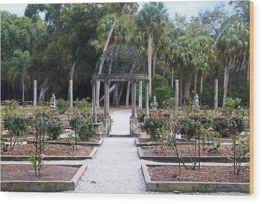 The Ringling Rose Garden Wood Print