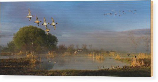 The River Bottoms Wood Print