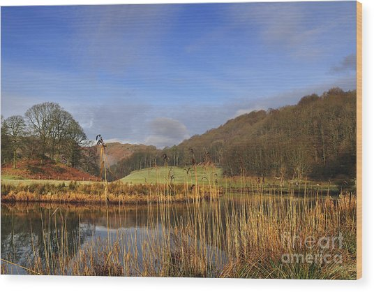 The River Brathay Wood Print