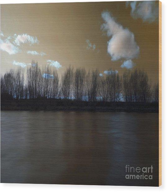The River Of Dreams Wood Print by Angel Ciesniarska