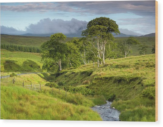 The Road To Carndonagh Wood Print
