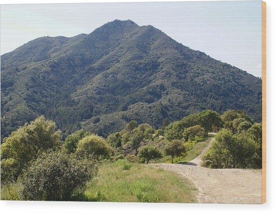 The Road To Tamalpais Wood Print