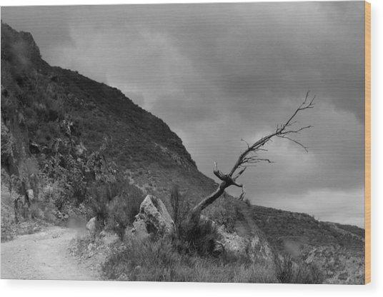 The Road To Ugijar Wood Print by Jez C Self