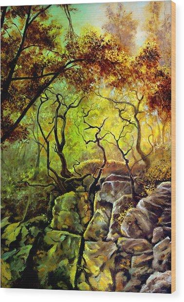 The Rocks In Starachowice Wood Print