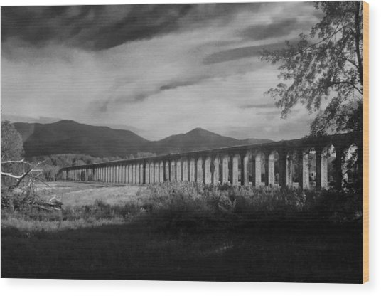 The Roman Aqueducts Wood Print