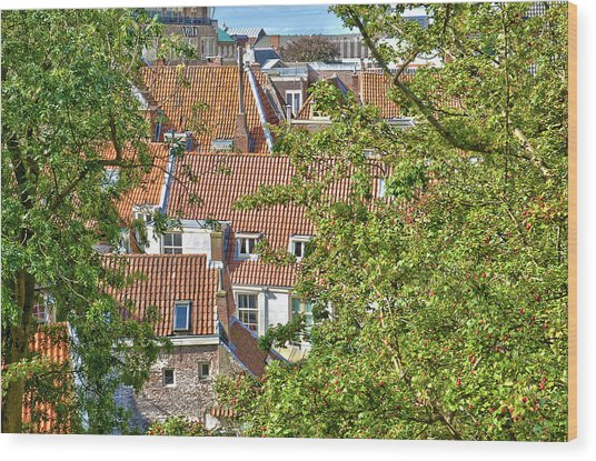 The Rooftops Of Leiden Wood Print