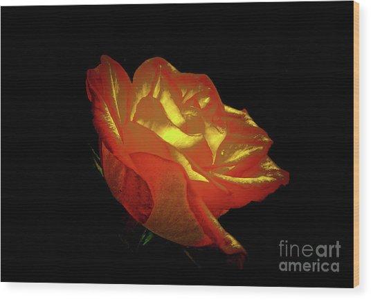 The Rose 3 Wood Print