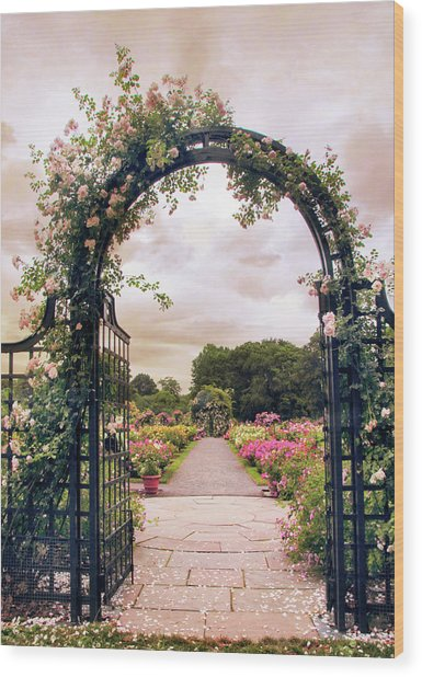 The Rose Allee Wood Print
