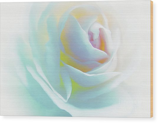 The Rose By Scott Cameron Wood Print