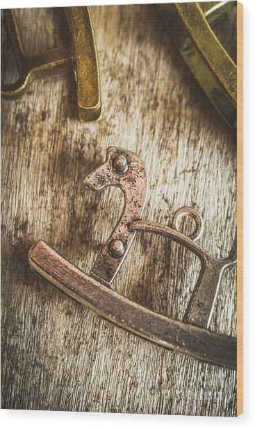 The Rusted Toy Horse Wood Print