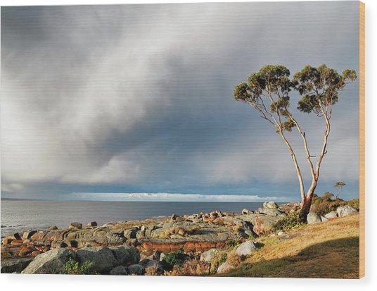 The Sea And The Sky Wood Print