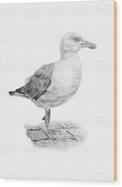 The Seagull Strut Wood Print