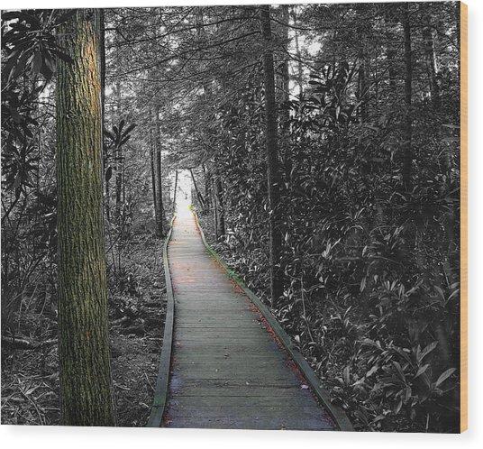 The Secret Garden Wood Print by John Mueller